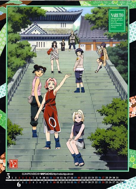 Studio Pierrot, Naruto, Shizune , Hinata Hyuuga, Anko Mitarashi