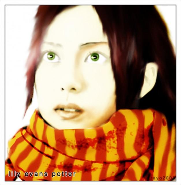 Harry Potter, Lily Potter, Member Art