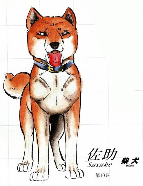 Sasuke (Ginga: Nagareboshi Gin)