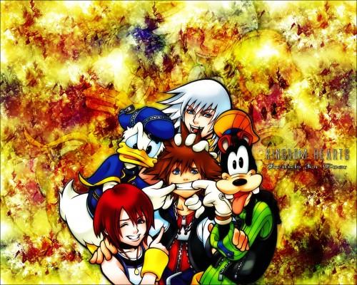 Square Enix, Kingdom Hearts, Donald Duck, Kairi, Sora Wallpaper