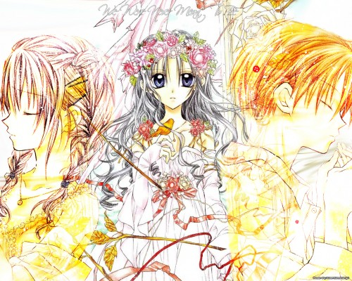 Arina Tanemura, Studio DEEN, Full Moon wo Sagashite, Mitsuki Koyama, Eichi Sakurai Wallpaper