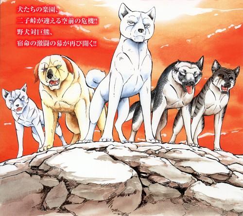 Yoshihiro Takahashi, Ginga: Nagareboshi Gin, Akame, Hiro (Ginga: Nagareboshi Gin), Kyoshiro Shirogane