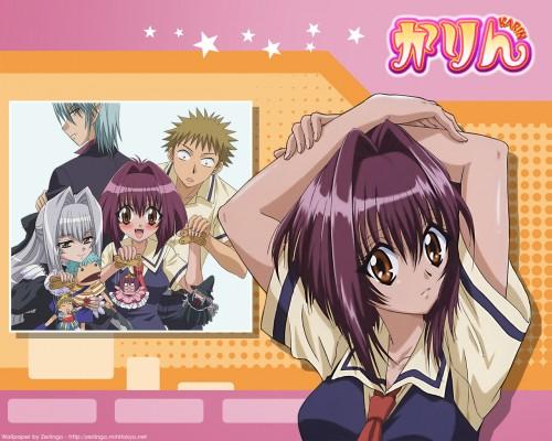 Karin, J.C. Staff, Anju Maaka, Boogie (Karin), Karin Maaka Wallpaper