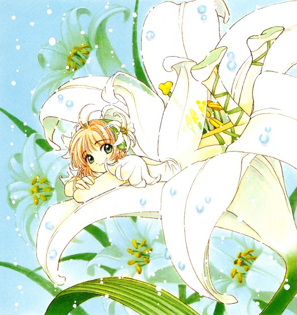 CLAMP, Cardcaptor Sakura, Cardcaptor Sakura Memorial Book, Sakura Kinomoto