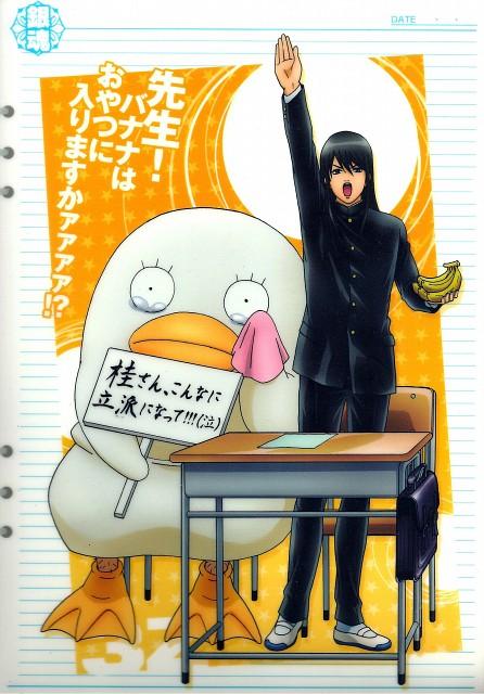 Hideaki Sorachi, Sunrise (Studio), Gintama, Elizabeth (Gintama), Kotaro Katsura