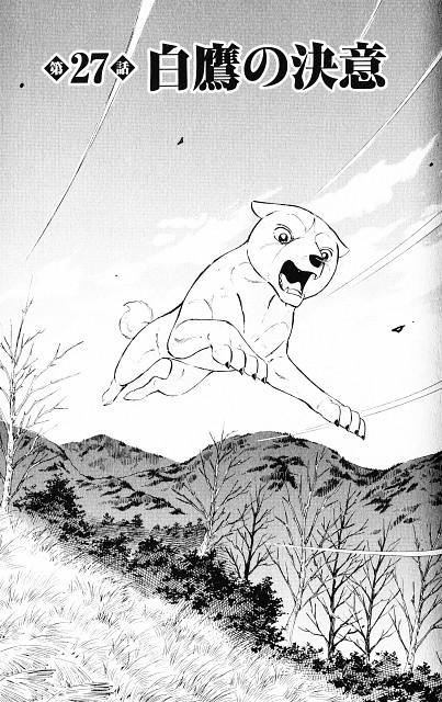 Yoshihiro Takahashi, Ginga: Nagareboshi Gin, Hakutaka, Chapter Cover