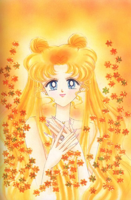 Naoko Takeuchi, Bishoujo Senshi Sailor Moon, BSSM Original Picture Collection Vol. V, Usagi Tsukino