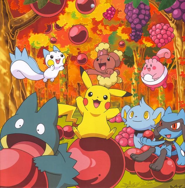 Nintendo, OLM Digital Inc, Pokémon, Shinx, Riolu