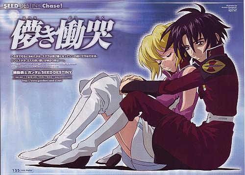Hisashi Hirai, Sunrise (Studio), Mobile Suit Gundam SEED Destiny, Stellar Loussier, Shinn Asuka