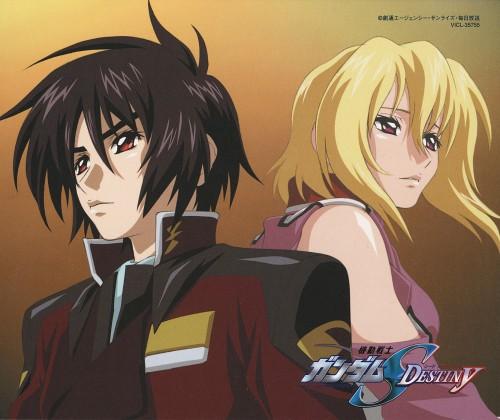 Hisashi Hirai, Sunrise (Studio), Mobile Suit Gundam SEED Destiny, Shinn Asuka, Stellar Loussier