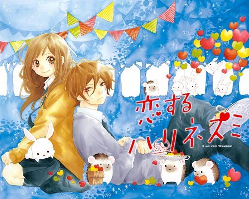 Nao Hinachi, Koisuru Harinezumi, Hozuki Heiji, Kii Ozawa, Official Wallpaper