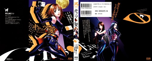 Tsukasa Hojo, TMS Entertainment, Cat's Eye, Hitomi Kisugi, Ai Kisugi