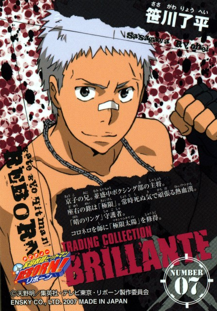 Akira Amano, Artland, Katekyo Hitman Reborn!, Katekyo Hitman Reborn!: Trading Collection, Ryohei Sasagawa