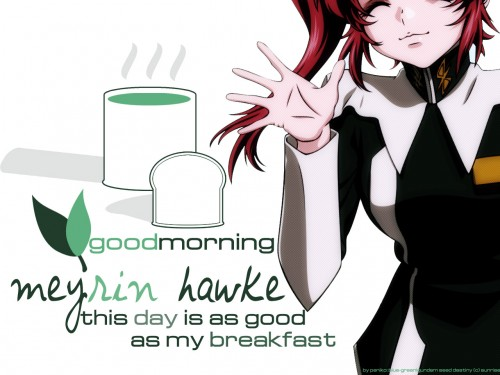 Sunrise (Studio), Mobile Suit Gundam SEED Destiny, Meyrin Hawke Wallpaper
