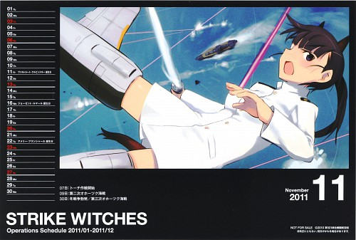 Gonzo, Anime International Company, Strike Witches, Mio Sakamoto