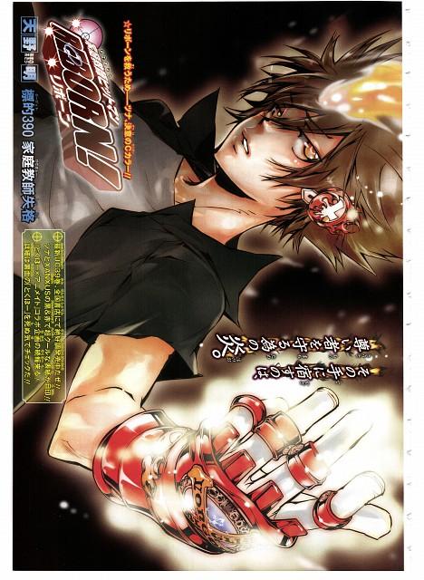 Akira Amano, Artland, Katekyo Hitman Reborn!, Tsunayoshi Sawada