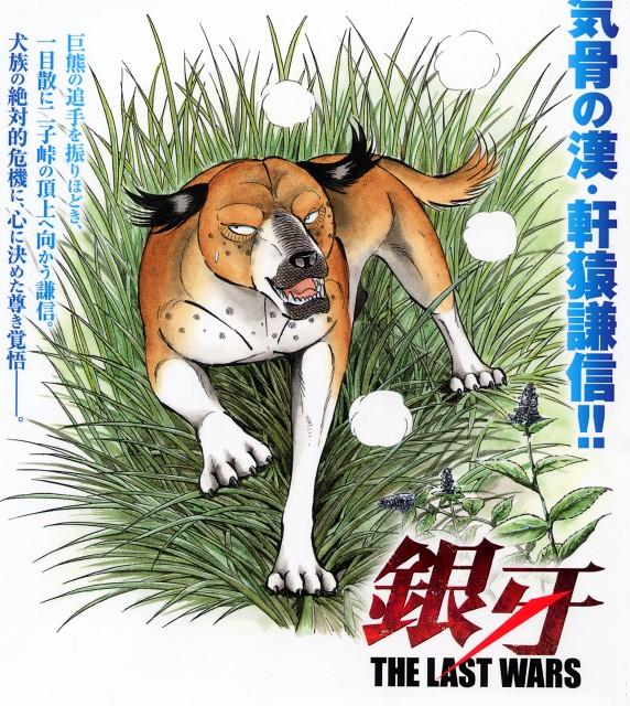 Yoshihiro Takahashi, Ginga: Nagareboshi Gin, Kenshin (Ginga: Nagareboshi Gin)