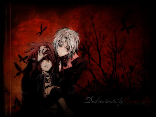 Katsura Hoshino, TMS Entertainment, D Gray-Man, Allen Walker, Lavi Wallpaper