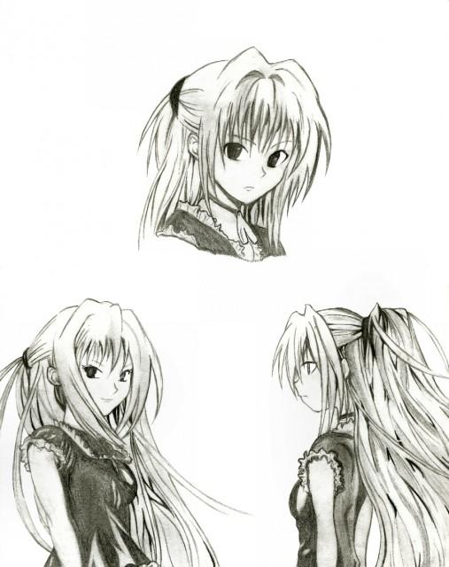 Kentaro Yabuki, Black Cat, Eve, Member Art