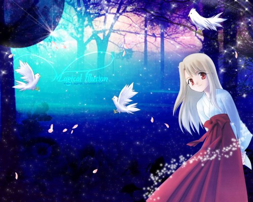 TYPE-MOON, Fate/stay night, Illyasviel von Einzbern Wallpaper