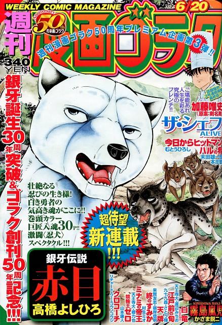 Yoshihiro Takahashi, Ginga: Nagareboshi Gin, Kurojaki, Akame, Magazine Covers
