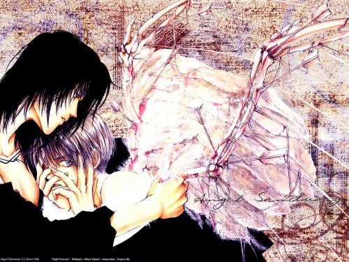 Kaori Yuki, Angel Sanctuary, Sakuya Kira, Setsuna Mudo Wallpaper