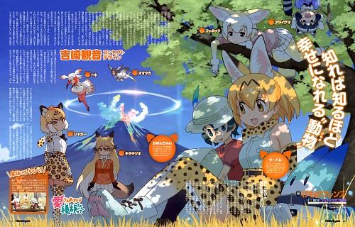 Mine Yoshizaki, Yaoyorozu, Kemono Friends, Common Raccoon, Crested Ibis