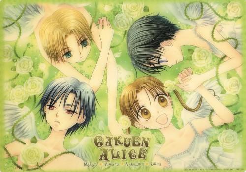Tachibana Higuchi, Group TAC, Gakuen Alice, Ruka Nogi, Hotaru Imai