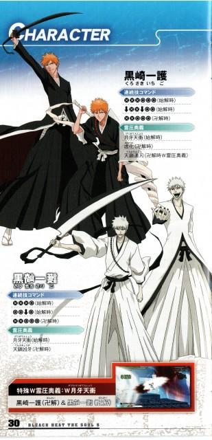 Studio Pierrot, Bleach, Hichigo Shirosaki, Ichigo Kurosaki