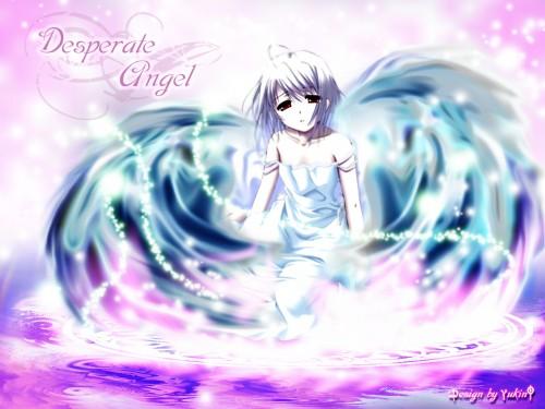 Princess Soft, Actress, White Clarity, Rino (White Clarity) Wallpaper