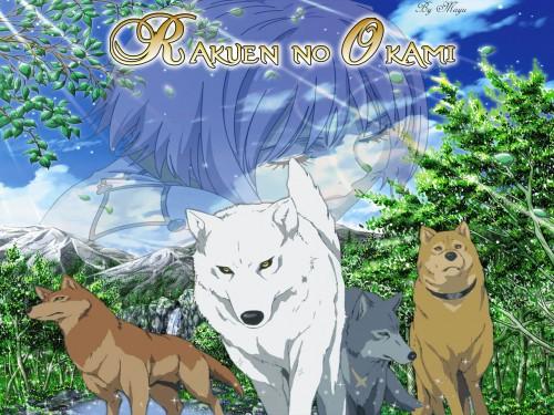 BONES, Wolf's Rain, Hige, Kiba (Wolf's Rain), Cheza Wallpaper