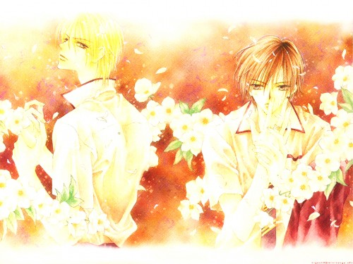 Hotaru Odagiri, Only the Ring Finger Knows, Wataru Fujii, Yuichi Kazuki Wallpaper