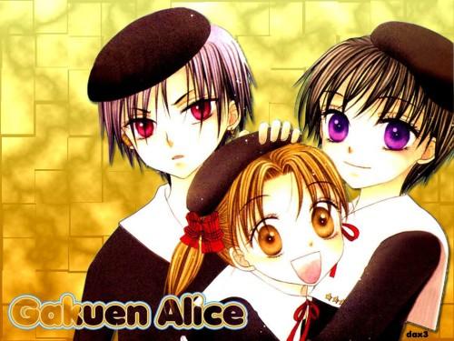 Tachibana Higuchi, Gakuen Alice, Natsume Hyuuga, Hotaru Imai, Mikan Sakura Wallpaper