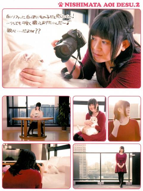 Aoi Nishimata, Nishimata Aoi Desu. 2, Artbook Cover