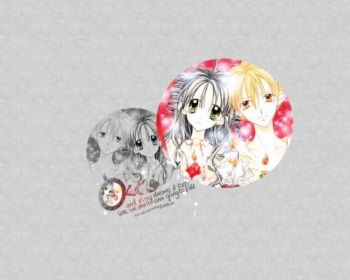Arina Tanemura, Full Moon wo Sagashite, Eichi Sakurai, Mitsuki Koyama Wallpaper