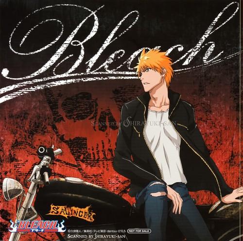 Studio Pierrot, Bleach, Ichigo Kurosaki, Album Cover