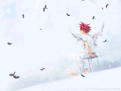 Yukiru Sugisaki, Xebec, D.N.Angel, Daisuke Niwa Wallpaper