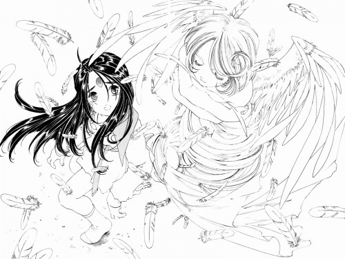 Kousuke Fujishima, Anime International Company, Ah! Megami-sama, Noble Scarlet, Skuld