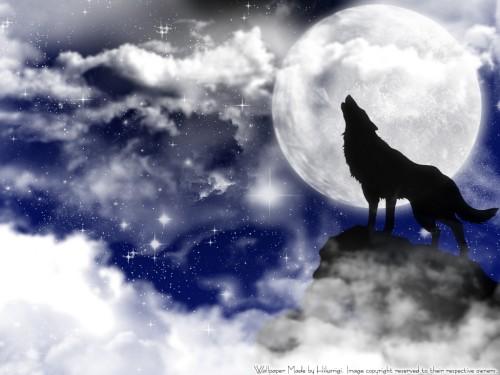 BONES, Wolf's Rain Wallpaper