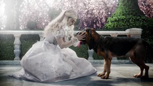 Disney, Alice In Wonderland (2010 Film), White Queen, Bayard, Live Action
