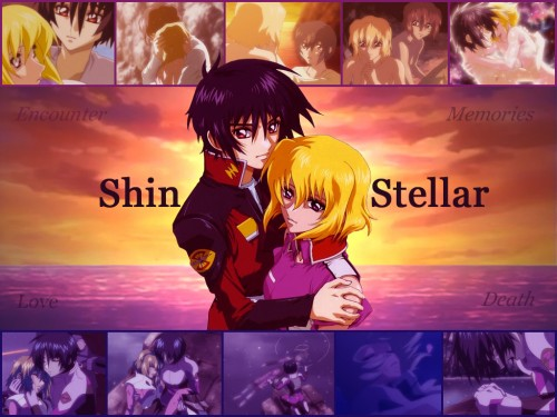 Sunrise (Studio), Mobile Suit Gundam SEED Destiny, Shinn Asuka, Stellar Loussier Wallpaper