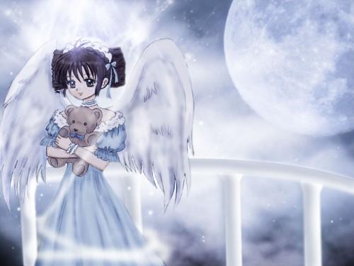 Arina Tanemura, Studio Deen, Full Moon wo Sagashite, Mitsuki Koyama Wallpaper