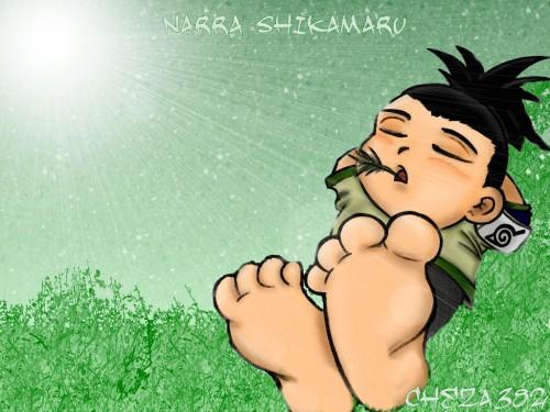 Masashi Kishimoto, Studio Pierrot, Naruto, Shikamaru Nara Wallpaper