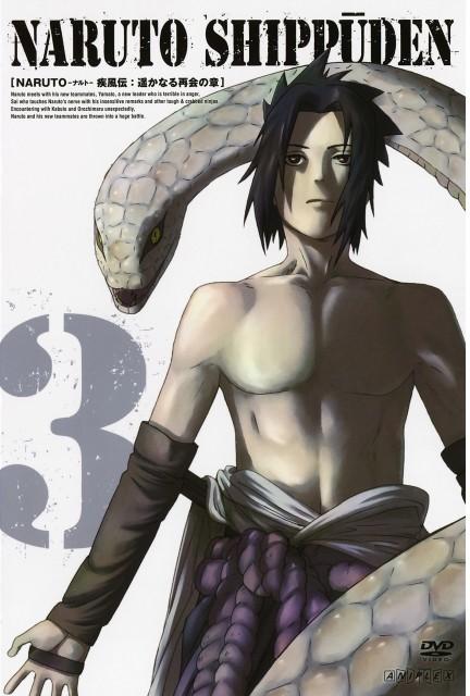 Studio Pierrot, Naruto, Sasuke Uchiha, DVD Cover