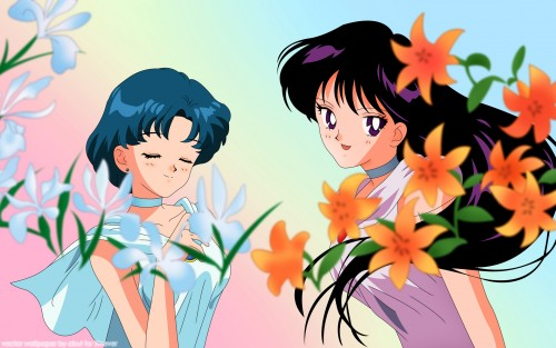 Toei Animation, Bishoujo Senshi Sailor Moon, Princess Mercury, Princess Mars, Vector Art Wallpaper