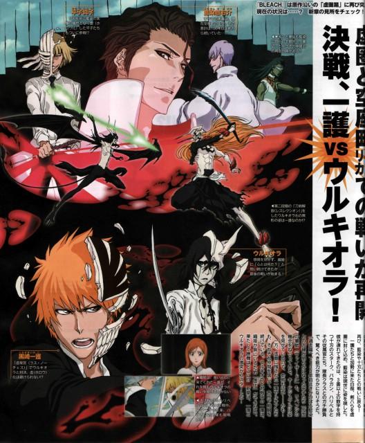 Studio Pierrot, Bleach, Hichigo Shirosaki, Ulquiorra Cifer, Toshiro Hitsugaya
