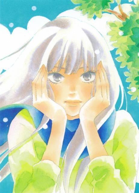 Karuho Shiina, Kimi ni Todoke, Sawako Kuronuma, Manga Cover