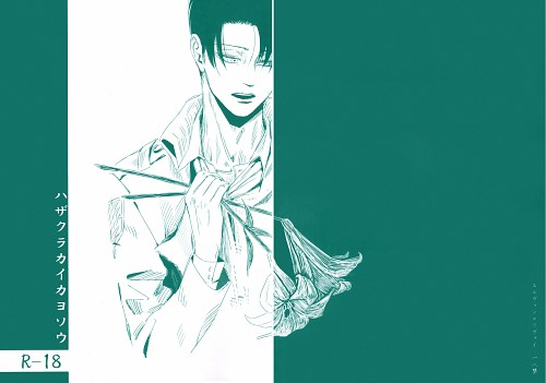 Shingeki no Kyojin, Levi Ackerman, Doujinshi Cover, Doujinshi