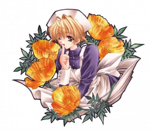 Carnelian, Kao no nai Tsuki Illust Collection CG, Kao no nai Tsuki, Sayaka Kurihara