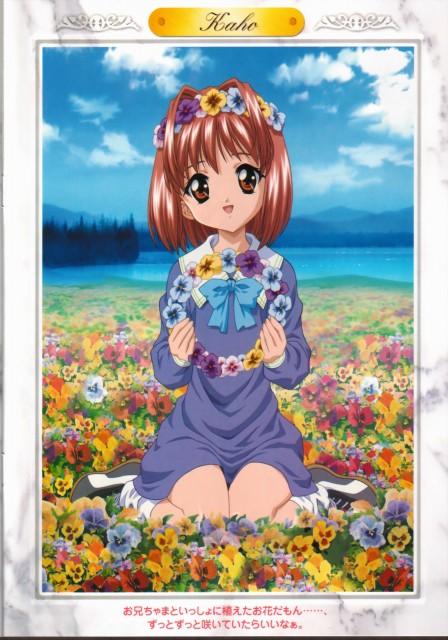 Yasunari Nitta, Sister Princess, Kaho